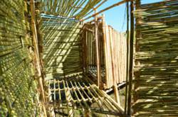 The NSAD team's bamboo dwelling featured a modular design that morphed to form a larger sleeping room at night. Floors were raised two feet off the ground, which was lucky considering the muddy San Luis Obispo hillside.