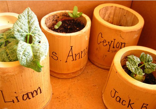 Recycled Crafts with Bamboo Scraps