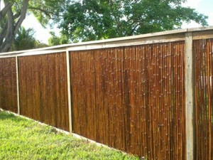 Bamboo fencing care and maintenance cali bamboo for Reseal cork flooring