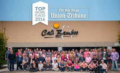 2016 UT Top Workplace
