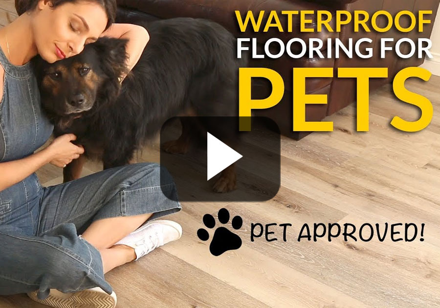 Waterproof Flooring for Pets – Cali Vinyl