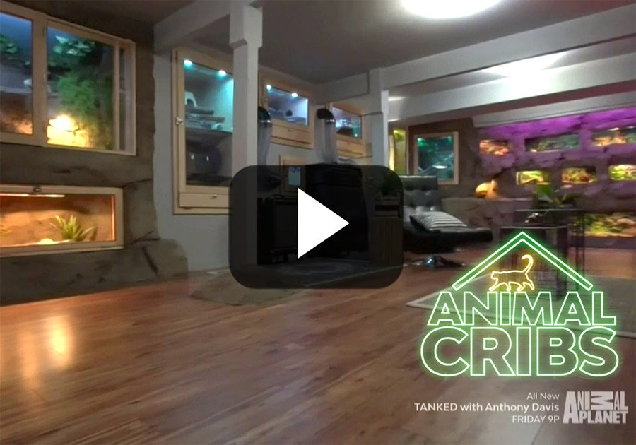 Animal Cribs Episode Eucalyptus Manimal Cave