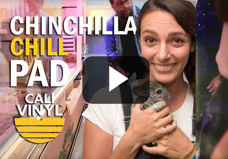 Animal Cribs Season 2 Episode 2 Chinchilla Cali Vinyl