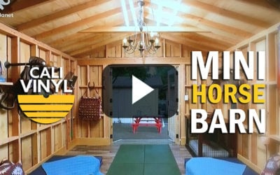 Animal Cribs Season 2 Episode 3 Mini Horse Barn