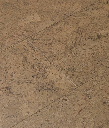 Sample - Dusk GreenClaimed® Cork Flooring