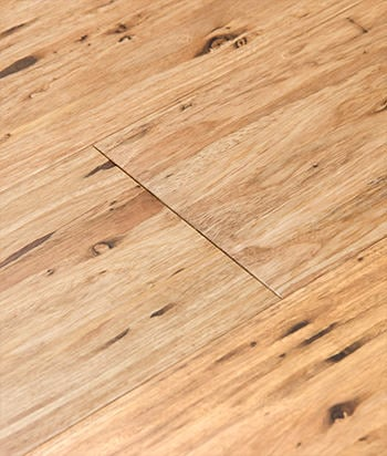 Eucalyptus Flooring Renewable Hardwood Floors By